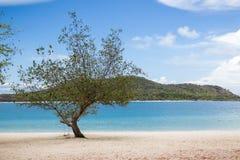 angthong国家公园海运泰国视图 免版税图库摄影