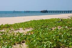 angthong εθνική όψη της Ταϊλάνδης θάλασσας πάρκων Στοκ φωτογραφίες με δικαίωμα ελεύθερης χρήσης