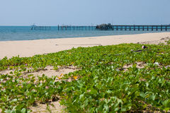 angthong park narodowy denny Thailand widok Zdjęcia Royalty Free