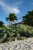 Anguilla Zdjęcia Royalty Free