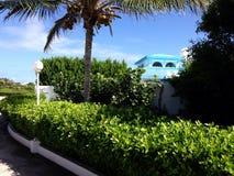 Anguilla Club. Plant Green Sky Stock Photo