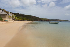 Anguilla Stock Images