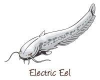 Anguilla elettrica, illustrazione di colore illustrazione di stock