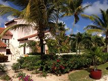 Anguilla Hotel. Willa Plant Exotic Flowers Royalty Free Stock Photos