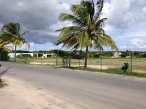 Anguilla. Village Palms Green Royalty Free Stock Image