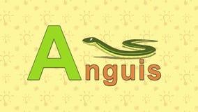 Anguis Alfabeto inglés del PARQUE ZOOLÓGICO - letra A stock de ilustración