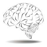 Angular geometric version of the human brain Royalty Free Stock Photos