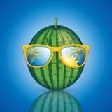 Anguria con gli occhiali da sole Immagini Stock Libere da Diritti