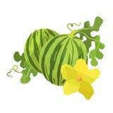 Anguria e fiore nello stile di origami illustrazione di stock
