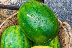 Anguria fresca nelle angurie verdi e gialle del canestro, in Th Immagini Stock Libere da Diritti