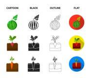 Anguria, ravanello, carote, patate Icone stabilite della raccolta della pianta nel fumetto, il nero, profilo, simbolo piano di ve illustrazione vettoriale