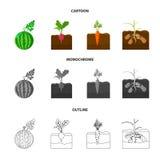 Anguria, ravanello, carote, patate Icone stabilite della raccolta della pianta nel fumetto, profilo, simbolo monocromatico di vet royalty illustrazione gratis