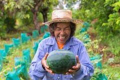 Anguria senior della tenuta della donna dell'agricoltore in azienda agricola Fuoco sull'anguria Fotografie Stock Libere da Diritti