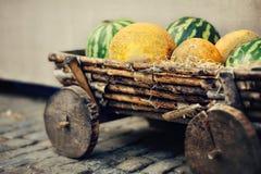 Angurie e meloni Fotografie Stock Libere da Diritti