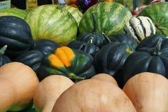 Angurie e zucca su esposizione ad un mercato degli agricoltori Fotografia Stock