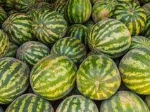 Angurie mature al mercato a Buchara, l'Uzbekistan immagine stock