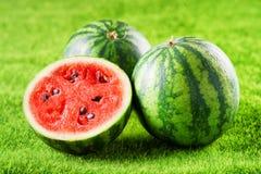Angurie rosse succose mature fresche su erba verde Alimento di Eco Immagini Stock Libere da Diritti
