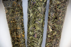 Angustifolium di Chamerion, iperico, Dracocephalum immagine stock