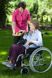 Anhörigvårdare som ger päronet till den rörelsehindrade höga kvinnan Royaltyfria Bilder