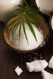 anh εξωτική πετσέτα σκηνής φοινικών φύλλων καρύδων κοκοφοινίκων λουτρών καρύδα με το άλας θάλασσας Στοκ Φωτογραφία