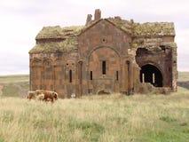 Ani-kathedraal Stock Fotografie