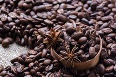 Anice καφέ και αστεριών Στοκ Εικόνα