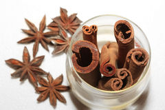 Anice and cinnamon Stock Photography