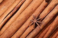 Anice and cinnamon macro background Royalty Free Stock Photo
