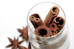 Anice and cinnamon Royalty Free Stock Image