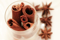 Anice and cinnamon Royalty Free Stock Photography