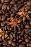 Anice di stella e chicchi di caffè Fotografia Stock