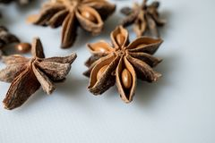 Anice stellato e semi secchi Fotografie Stock