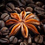 Anice stellato sui precedenti dei chicchi di caffè fotografia stock