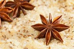 Anijsplant bemerkt zout Stock Fotografie