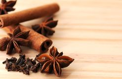 Anijsplant, cinnamom en kruidnagelssoorten Royalty-vrije Stock Foto