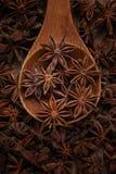 anijsplant in een houten lepel Hoogste mening De ruimte van het exemplaar royalty-vrije stock afbeelding