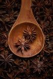 anijsplant in een houten lepel Hoogste mening De ruimte van het exemplaar royalty-vrije stock foto's