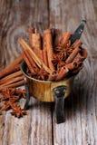 Anijsplant en pijpjes kaneel Royalty-vrije Stock Afbeeldingen