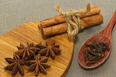 Anijsplant, kaneel en kruidnagelkruiden stock afbeeldingen