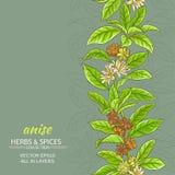 Anijsplant vectorachtergrond Stock Foto's
