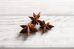 Anijsplantboom Royalty-vrije Stock Afbeelding
