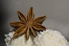 Anijsplantster met witte chocolade Royalty-vrije Stock Foto's