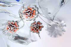 Anillo congelado Foto de archivo libre de regalías