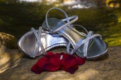 Anillo de bodas en los pétalos con los zapatos y la cascada en fondo Fotografía de archivo libre de regalías