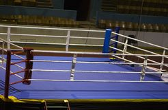 Anillo de boxeo Fotografía de archivo libre de regalías