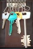 Anillo de claves del bolsillo Foto de archivo