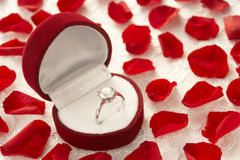 Anillo de diamante en el rectángulo rodeado por Rose Fotos de archivo libres de regalías