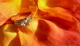 Anillo de diamante en los pétalos de Rose Fotografía de archivo libre de regalías