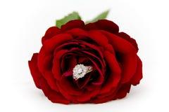 Anillo de diamante en una rosa Foto de archivo libre de regalías