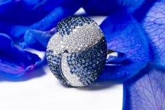 Anillo de diamante entre los pétalos Imágenes de archivo libres de regalías